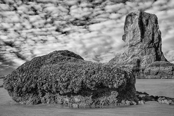Sea Stacks On Bandon Beach At Low Tide