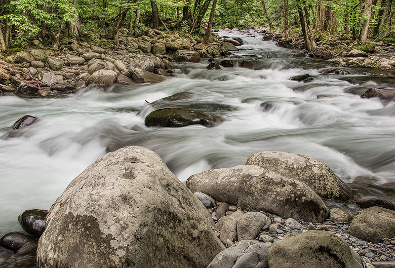 River Rock & Whitewater On Little Pigeon River
