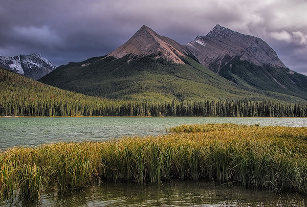 Beaver Lake, Jasper NP