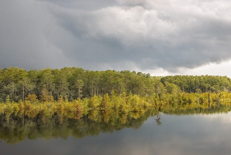 Storm Light On West Arm Creek