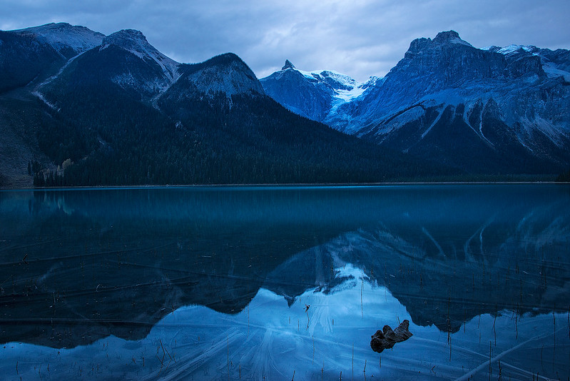 Blue Dawn At Emerald Lake - Yoho NP