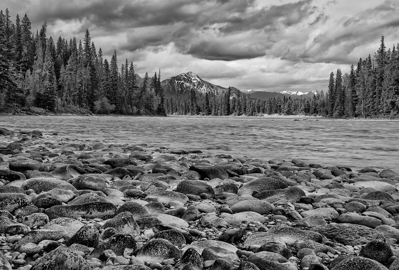 Shoreline View Athabasca River
