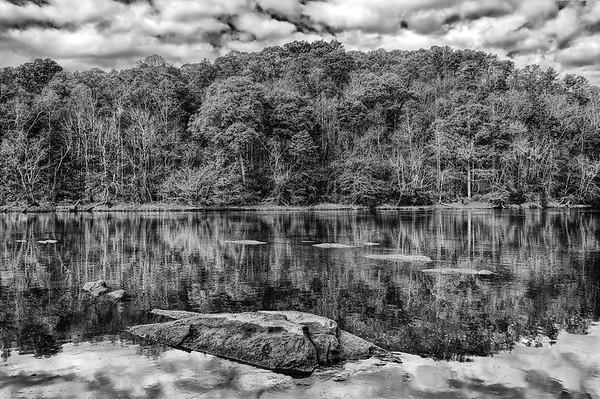 Tree Reflections On Chattahoochee River