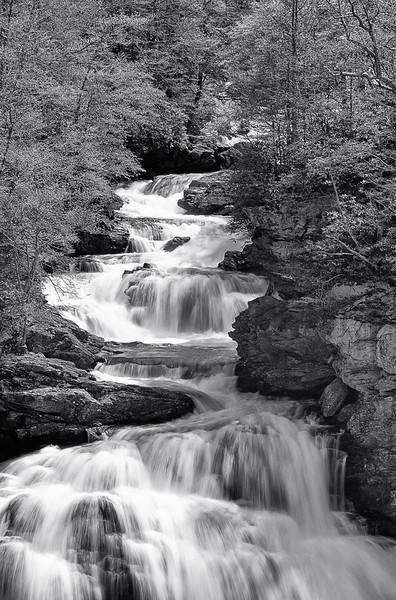 Cullasaja Falls In Spring