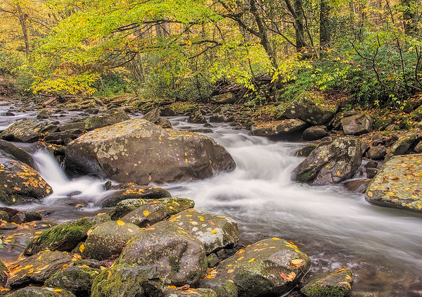 Oconaluftee River in Smoky Mountain NP