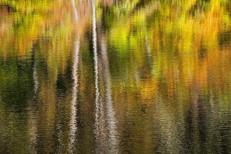 Reflections On Ogle Lake #1