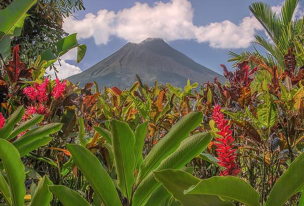 Arenal Volcano Framed By Rain Forest Garden