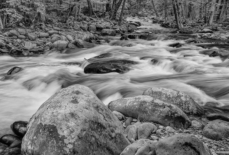 River Rocks and Whitewater On Little Pigeon River