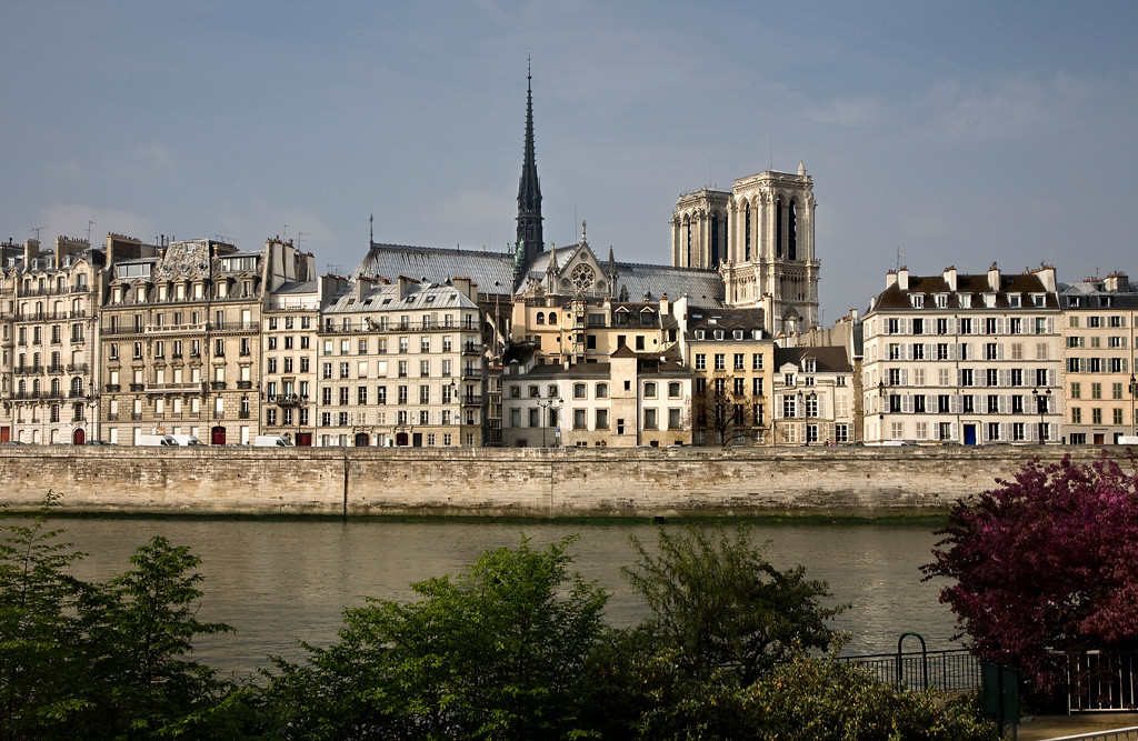 The Quai aux Fleurs, on Ile de la Cité, stretches along the edge of the Seine from Pont Saint Louis to Pont d'Arcole.<br /> <br /> Rising high above the pastel dwellings that line the Quai are the steeple and bell towers of the magnificent Cathédrale de Notre Dame.