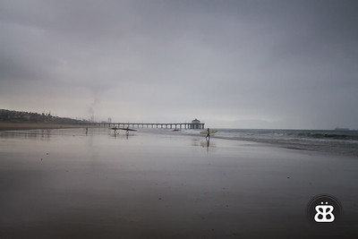 Grey Surfers