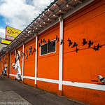 Children with Birds: The Murals of Guelaguetza Restaurant