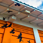 Detail of birds in the Rafters: The Murals of Guelaguetza​ Restaurant