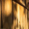 Minimalist Monday: Wood Fence #1  Silverlake, Los Angeles, CA