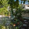 Garden Path at DragonflyHill Urban Farm