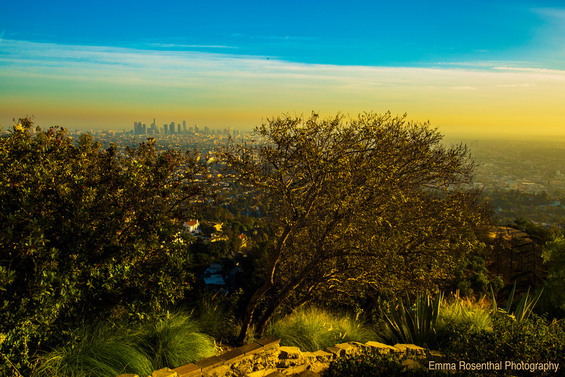 View of the L.A. Basin at Sunset: The Wilderness City