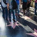 Hollywood Walk of Fame #2 (Or:  Footprints Among the Stars)