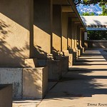 Barnsdall Art Park: Colonnade