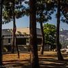 Barnsdall Art Park, Hollywood Through the Trees