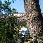 Hollywood Sign from Beachwood Canyon #2