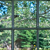 Priscilla's Window Nova Scotia Sept 2002