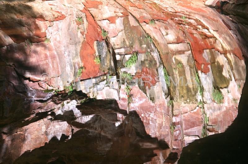 Oak Creak Canyon near Sedona, Arizona June 1994