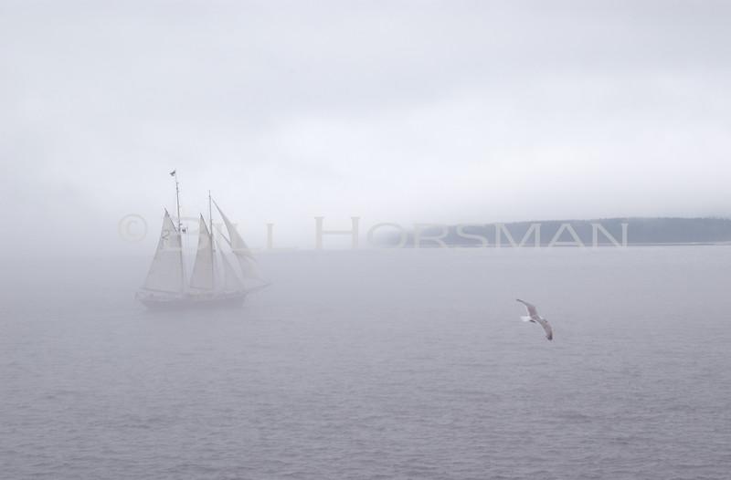 Bass Harbor, MDI Maine