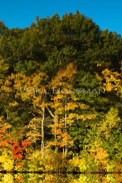08-FallFoliage-120