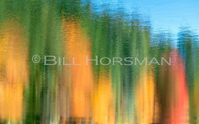 20-FallFoliage-09