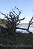 Lake Maloya_6634