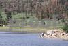 Lake Maloya 8-22-2011_8113