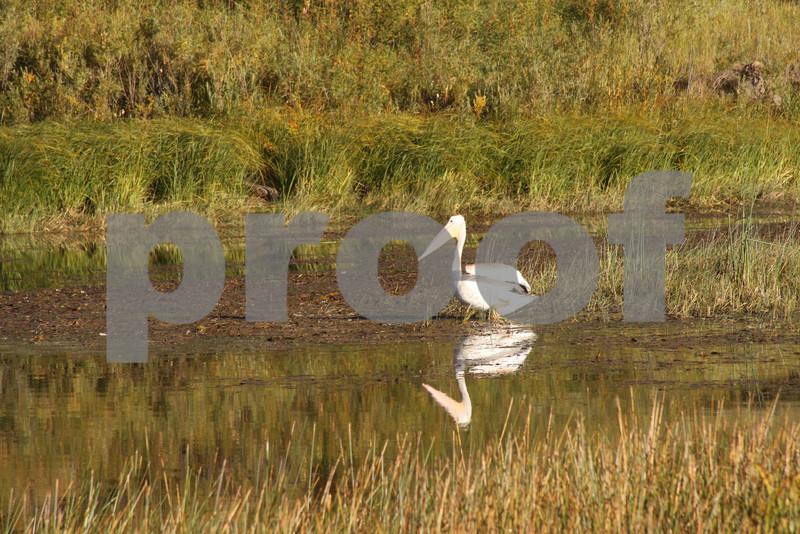 Lake Maloya_6656