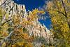 Cimarron Canyon_033
