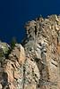 Cimarron Canyon_012