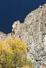 Cimarron Canyon_002