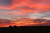 Sunrise N of Walsenburg_021