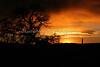 Sunrise near Gardner_002