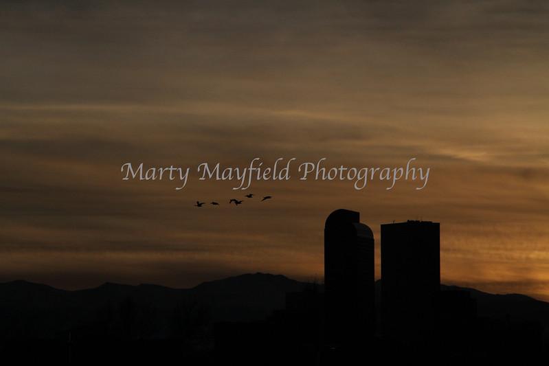 Denver Sunset_9758