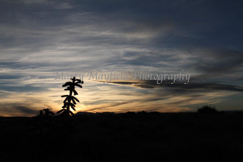 Rocky Mtn Sunset_8925