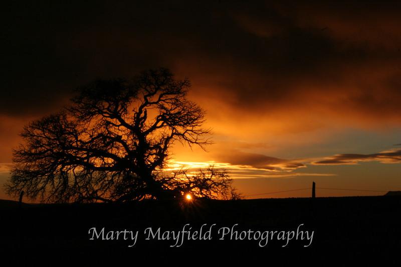 Sunrise near Gardner_008