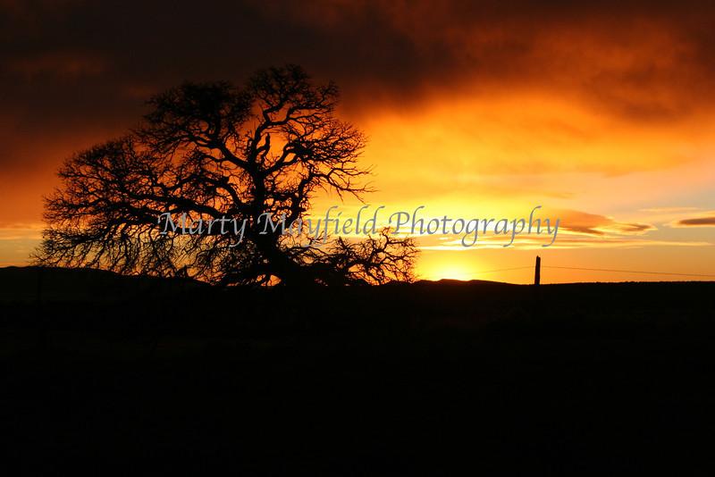 Sunrise near Gardner_001