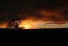 Sunrise near Gardner_003