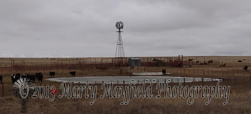Heiman Ranch Windmill_6169