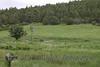 Windmill Zele Ranch IMG_2979
