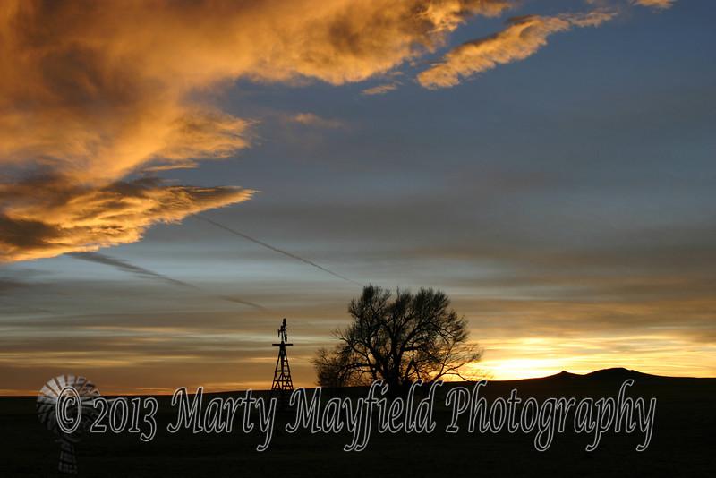 Windmill and Cottonwood Sunset 0387