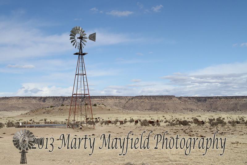 Dry Cimarron_5271