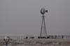 Near Mosquero NM Windmill_6163