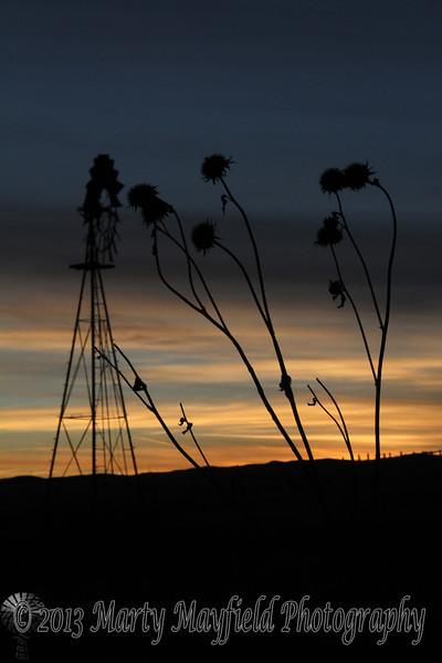 Smith Windmill Sunset_8313