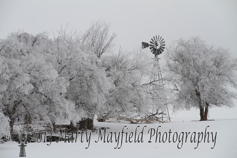 Frosty Windmill near Farley NM_9376