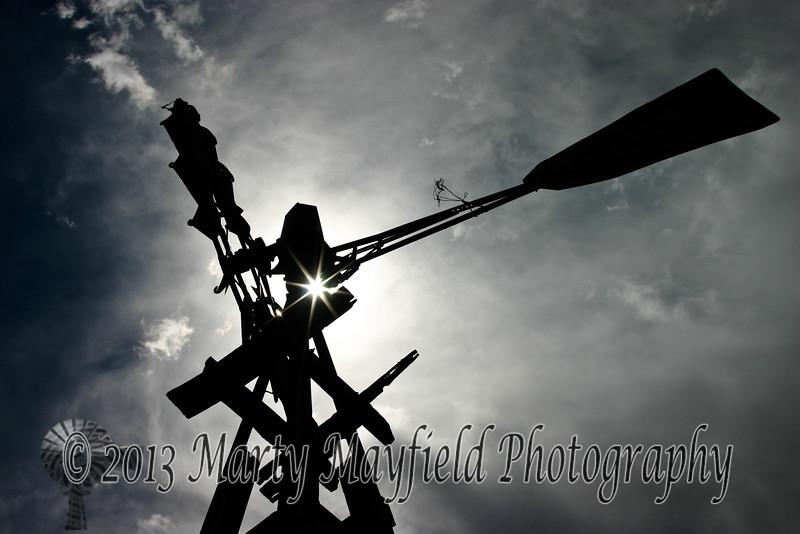 Windmill Wildlife Area IMG_2868
