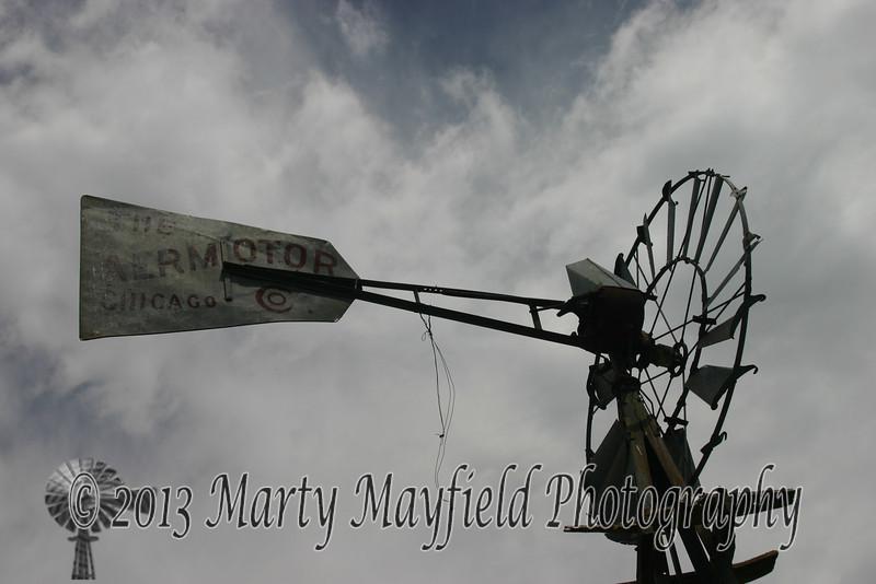 Windmill Wildlife Area IMG_2865